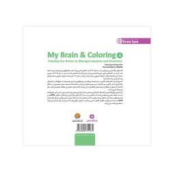 مغز من و رنگ آمیزی (4)